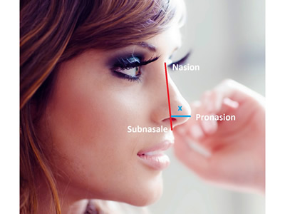 nose job with best surgeon